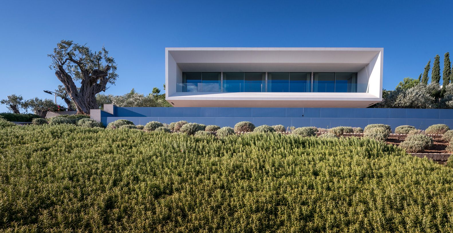 Gallery Of Trif House Sergey Fedotov 5 Contemporary House Design Architecture House