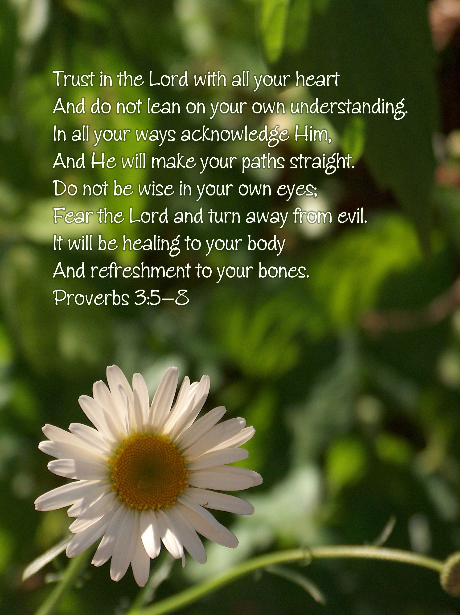 Proverbs 3 5 8 Trust In The Lord With All Your Heart I Definitely Skimp On The All Part Sometim Fear Of The Lord Scripture Pictures Inspirational Pictures