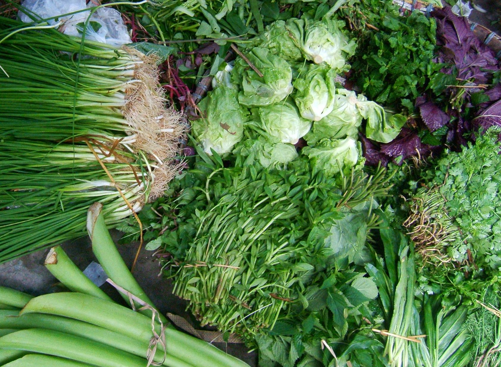 Vietnamese Vegetables With Images Cooking Classes Cooking
