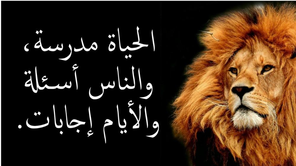 حكم وامثال وكلمات لها معاني الجزء 4 Youtube Arabic Quotes Funny Texts Beautiful Nature Wallpaper