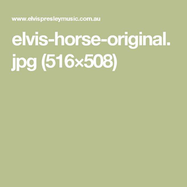 elvis-horse-original.jpg (516×508)