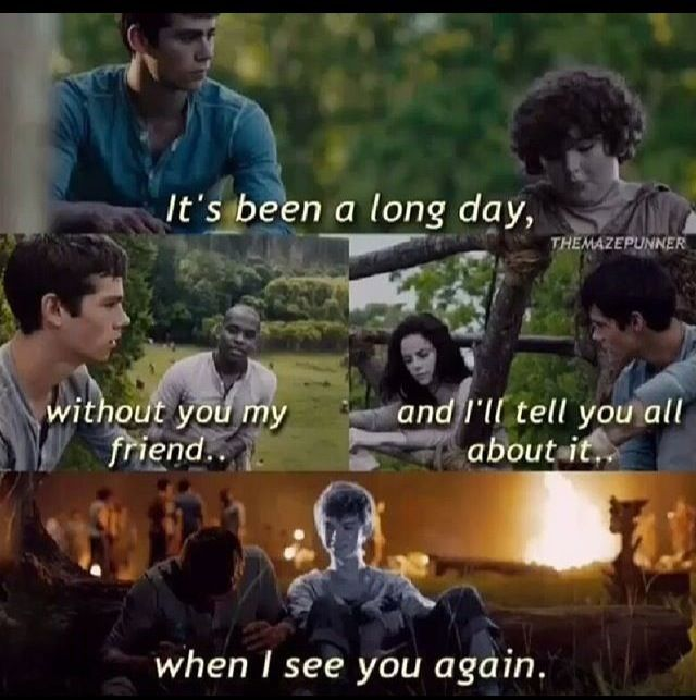 b30d9774b55b9de9fd6ac84d6f4a917d the maze runner memes 087 wattpad health and fitness tips,Funny Maze Runner Memes