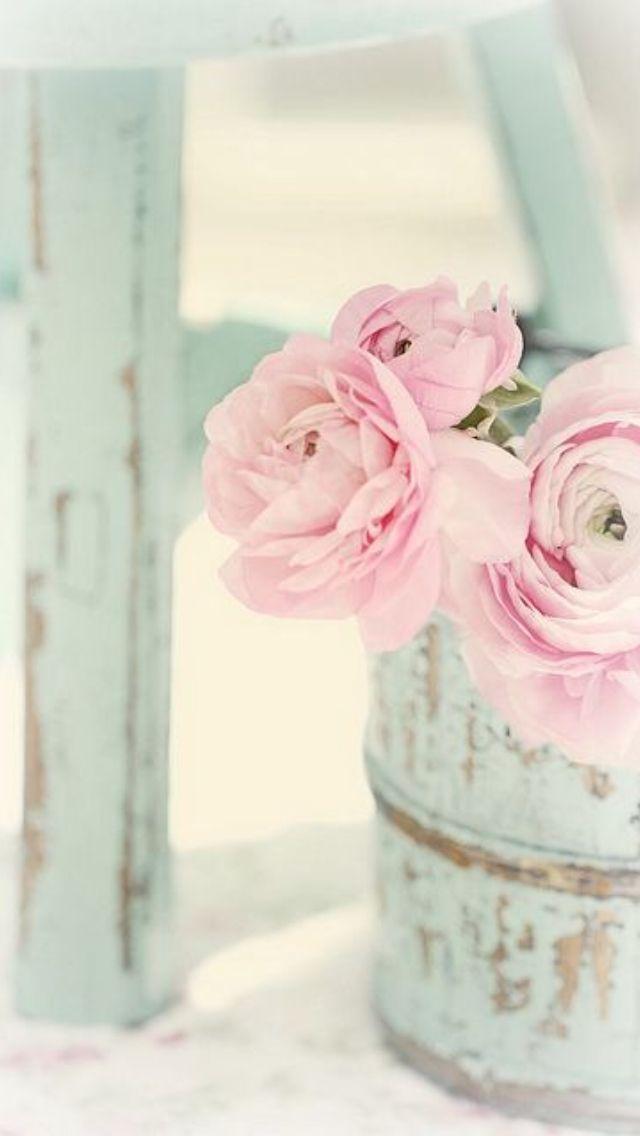 Pastel Flower Iphone Wallpaper