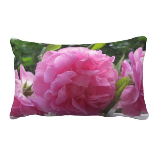 Pink Old Fashioned Roses Throw Pillows http://www.zazzle.com/pink_old_fashioned_roses_throw_pillows-189778177954114288?rf=238412905592140161