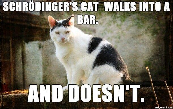 Schrödinger jokes. They never grow old.