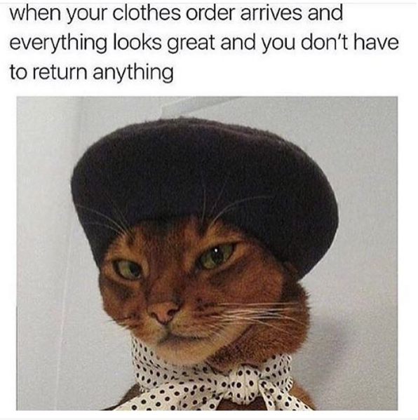 The 11 Funniest Instagram Meme Accounts That Will Keep You Scrolling For Hours Animal Memes Funny Pictures Funny Fashion