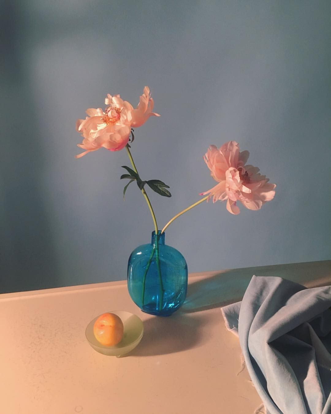 Instagram의 A P Bio님 That Little Thing Is A Lemon Plum Lemon Plum Lemon Plum Lemon Plum Still Photography Still Life Photography Flower Vases