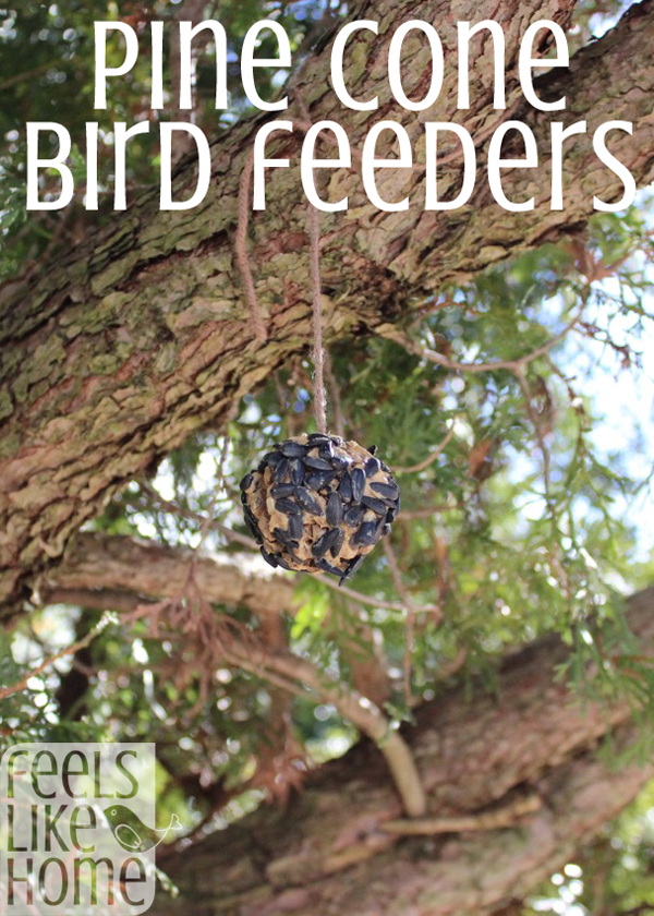 Pine cone bird feeder craft pine cone bird feeder bird feeder diy pine cone bird feeder craft easy crafts for kids this quick and easy and messy bird seed craft for kids is great for toddlers and preschoolers but solutioingenieria Image collections