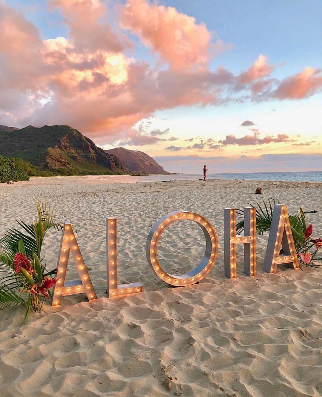 The Only Lights We Need In Hawaii Aloha Mele Kalikimaka