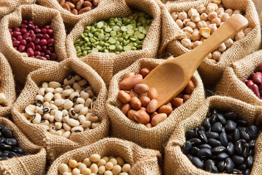 fødevarer med protein