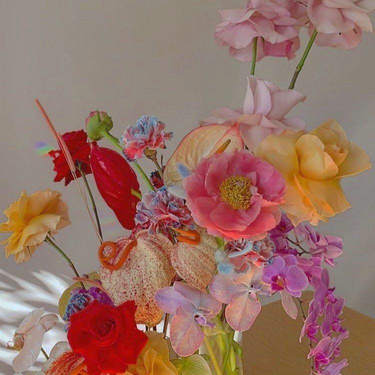 Eline Yumeko Kastrup Misir On Instagram Paent In 2020 Flower Aesthetic Pretty Flowers Blooming Flowers