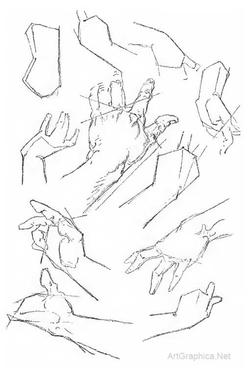 hand construction, drawing hands, bridgman plates, studies | Art ...