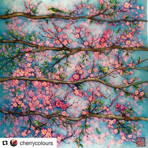 🌸Que espetáculo de cerejeiras! 😱😍🌸By @cherrycolours 👈 #SecretGarden  #blossom #cherrytree #art #jardimsecreto  #secretgardencoloringbook #johannabasford #coloringbook