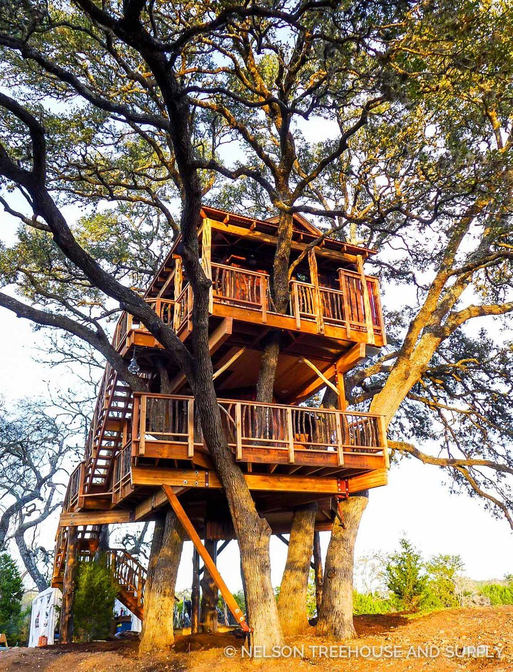 treehouse masters discovery channel hill country hideout pete nelson treehouse masters season