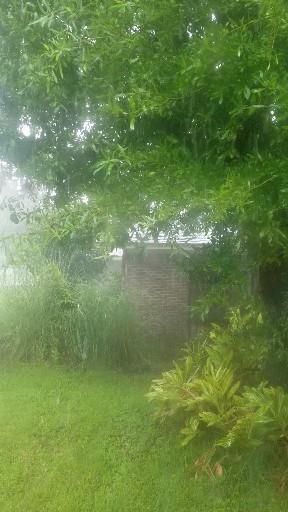 Florida rainy season means it rains everyday and e