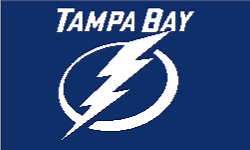 Tampa Bay Lightning Afghan Tampa Bay Lightning Tampa Bay Tampa