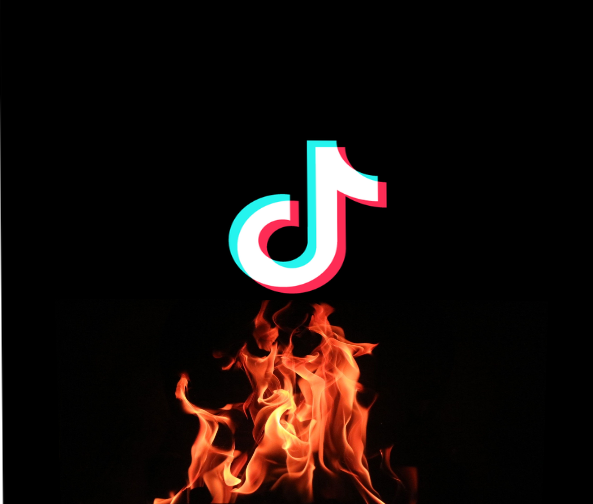 If Tiktok Comes Into 2021 We Will Be Doomed So We Need To Burn It Neon Signs Neon Doom