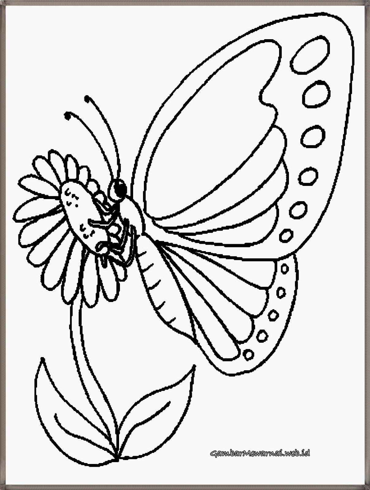 Kumpulan Contoh Sketsa Gambar Kupu Kupu Dan Bunga