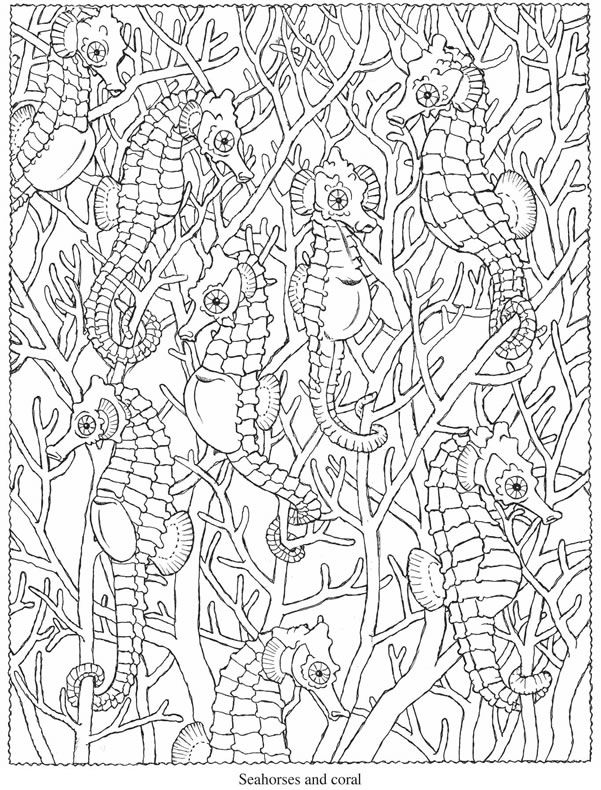 welcome to dover publications http www doverpublications com zb