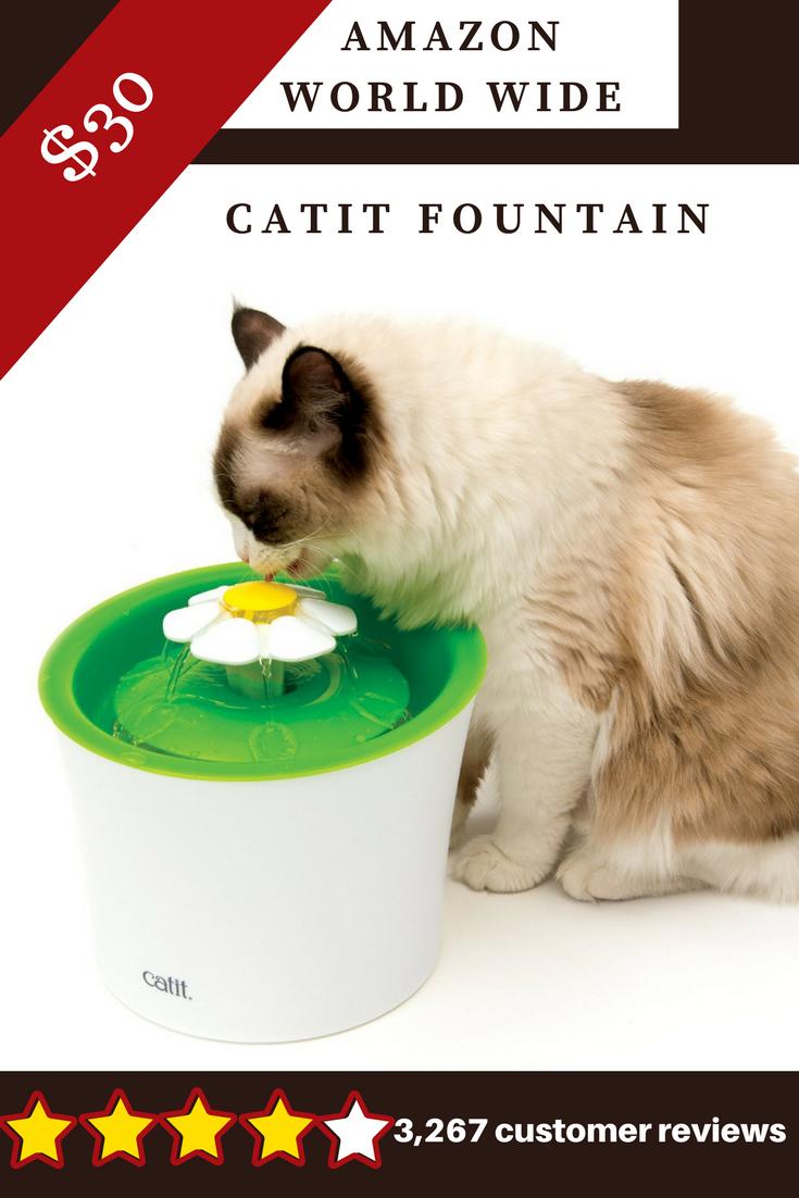 Catit Fountain Fountain Water Pets Petsmart Animal Animallover Cat Dog Doglovers Supplies Accessories Cat Water Fountain Pet Accessories Cat Flowers
