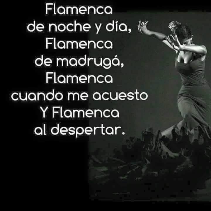 Flamenco Flamenco Baile Flamenco Y Frases Flamencas