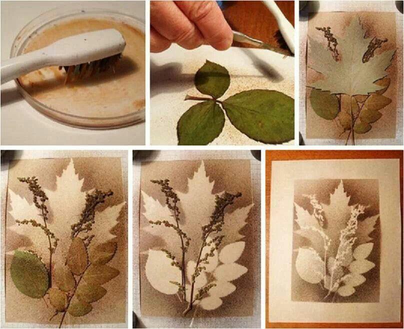 Splatter Art With Layered Leaves Work Ideas Pinterest Splatter