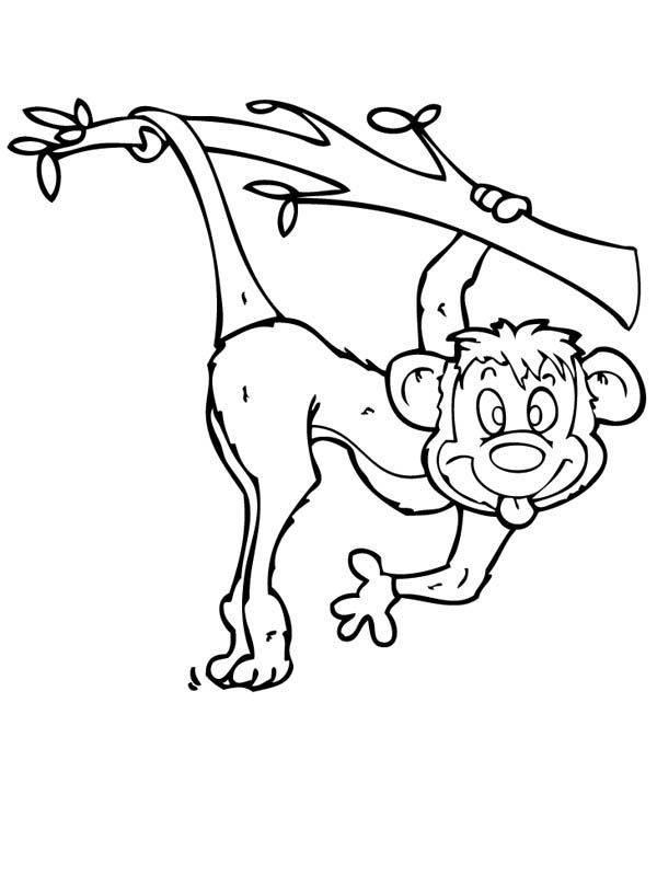 Monkey make funny monkey face coloring page