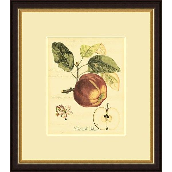 Tuscan Fruits Framed Wall Art ($109) ❤ liked on Polyvore featuring