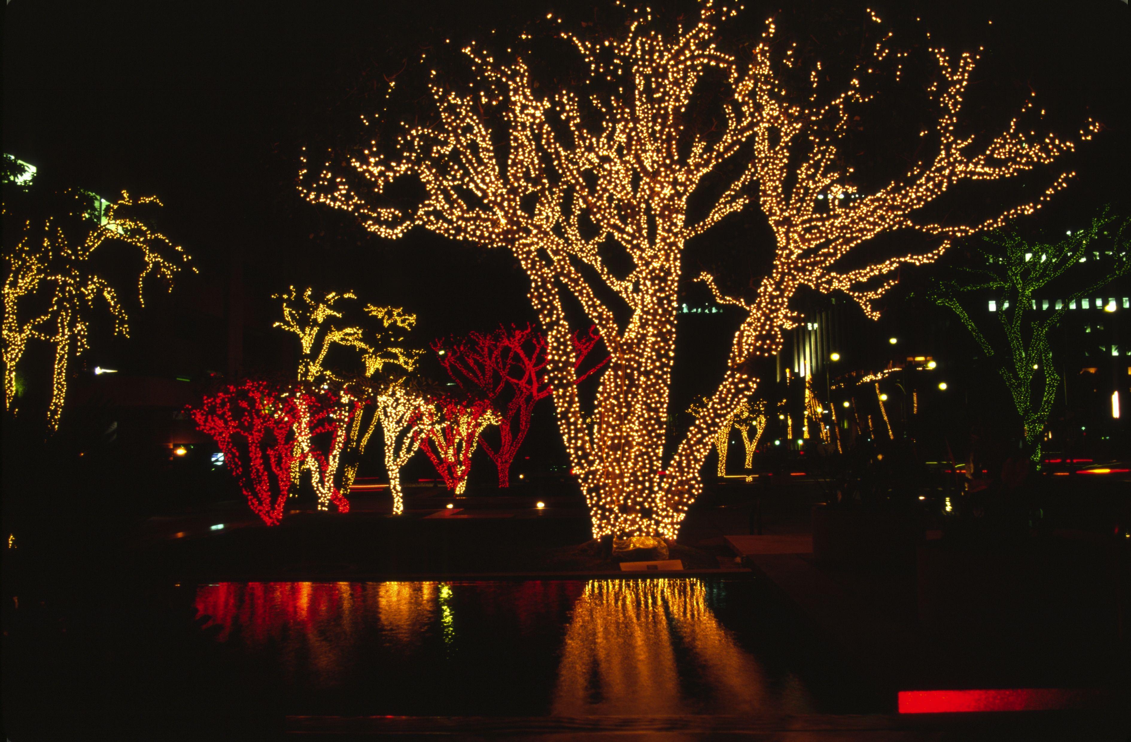 Newsletter October 2009 Led christmas lights, Outdoor