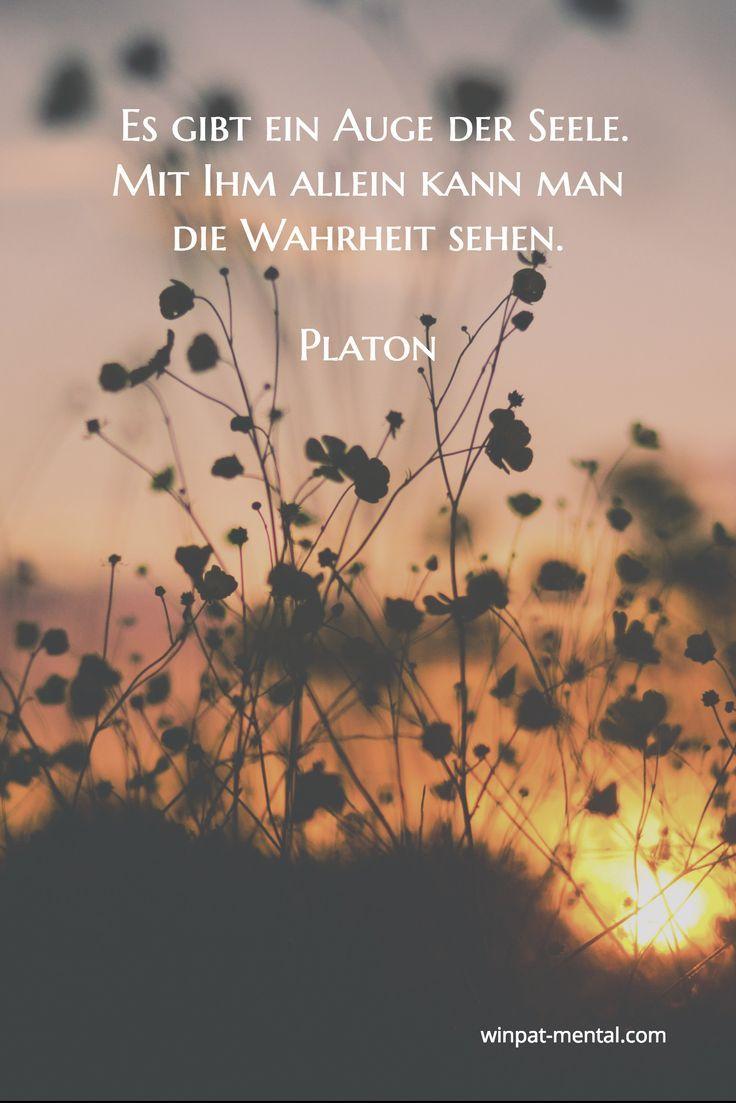 Platonische Beziehung suchen