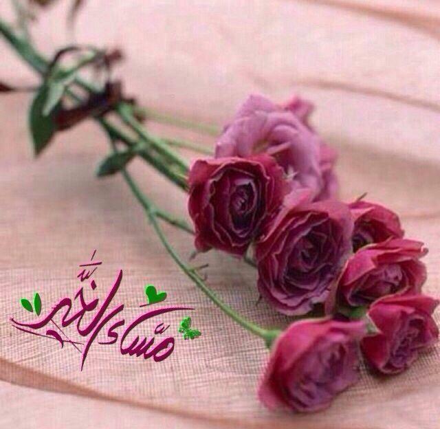 مساء الخير Happy Birthday Wishes Flowers For You Birthday Wishes