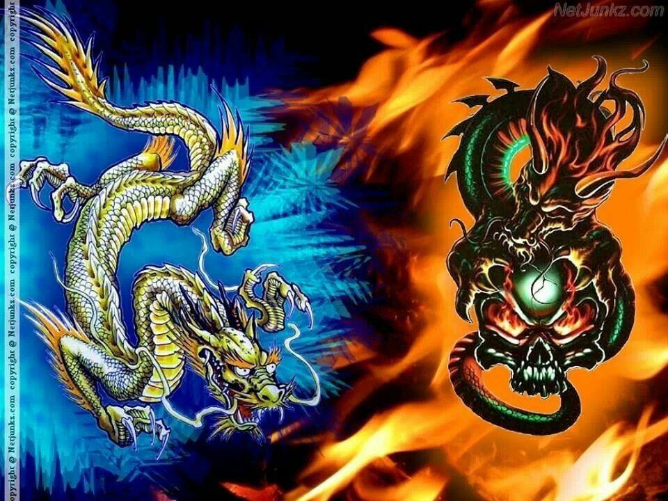 Fire And Ice Fire Dragon Wallpaper Pictures Ice Dragon