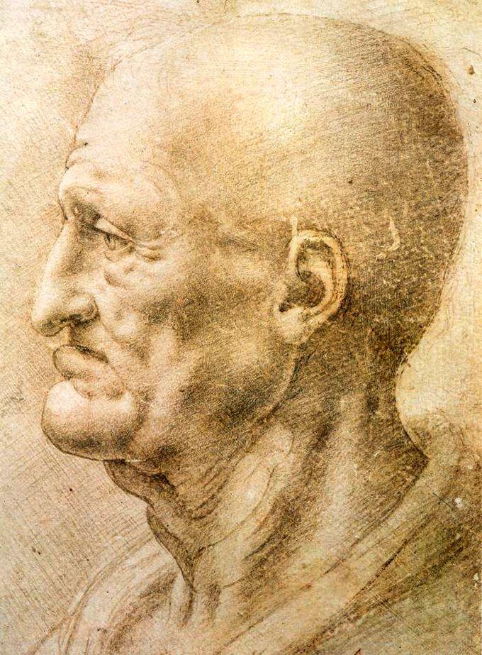 Old Man (study) by Leonardo da Vinci, 1500 | Arte, Leonardo