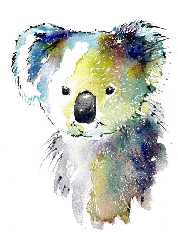 Koala Bear Art Watercolor Art Print Bear Interior Design Wall