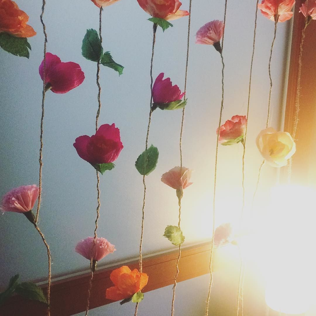 Because Life Is Meant To Be Colorful Decorated The Room With This
