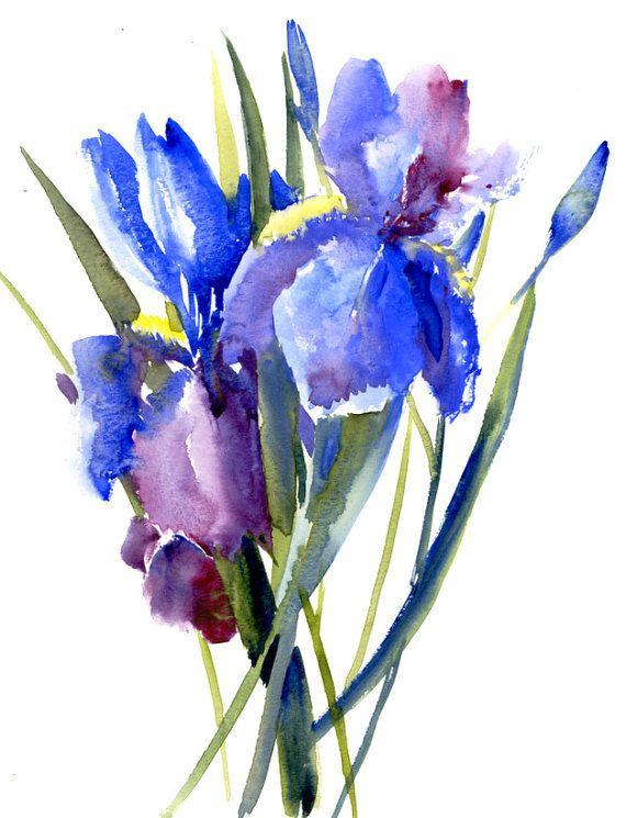 Blue Irises Original Watercolor Painting 14 X 11 In Art Floral