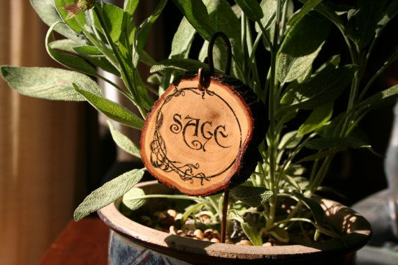 Whimsical Garden Signs - Plant Herb Flower Markers Gardening