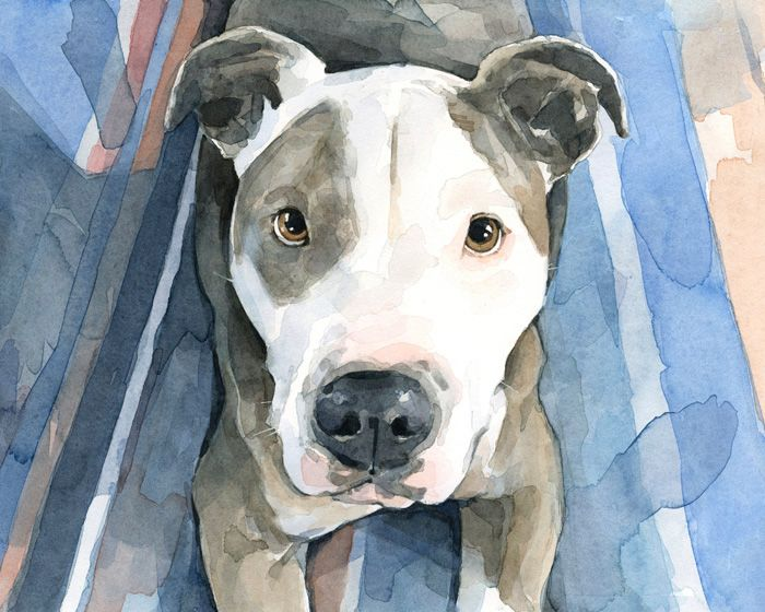 New Dog Watercolor Portraits Pitbulls Animal Paintings Dog