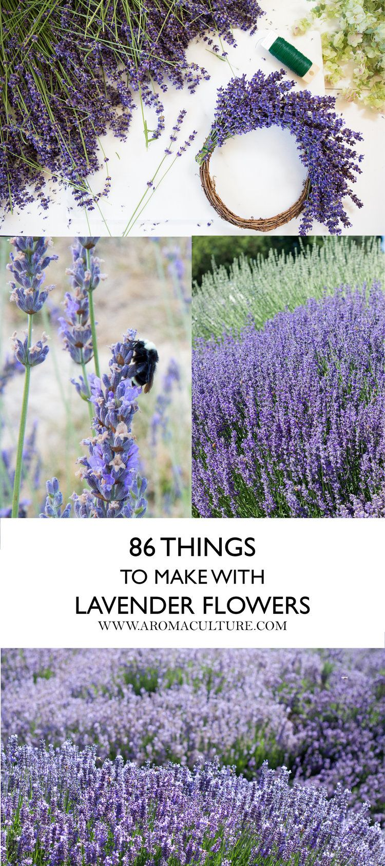 86 Ways To Use Lavender Aroma Culture Lavender Crafts Lavender Plant Flowers