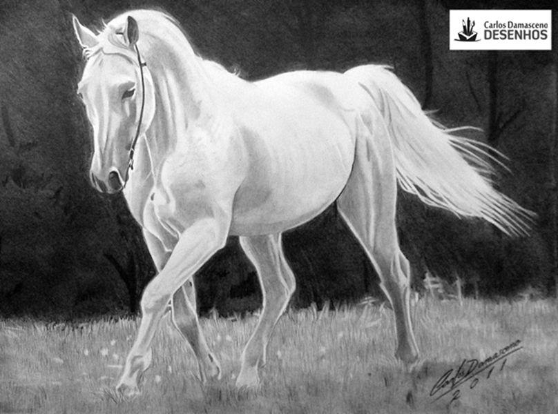 desenhos de cavalos - Resultados Baidu Yahoo Search da busca de imagens