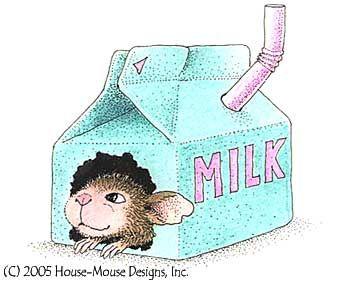 milk carton condo