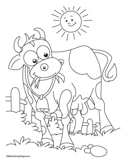 download free sun bathing with grass eating cow coloring page for kids best coloring