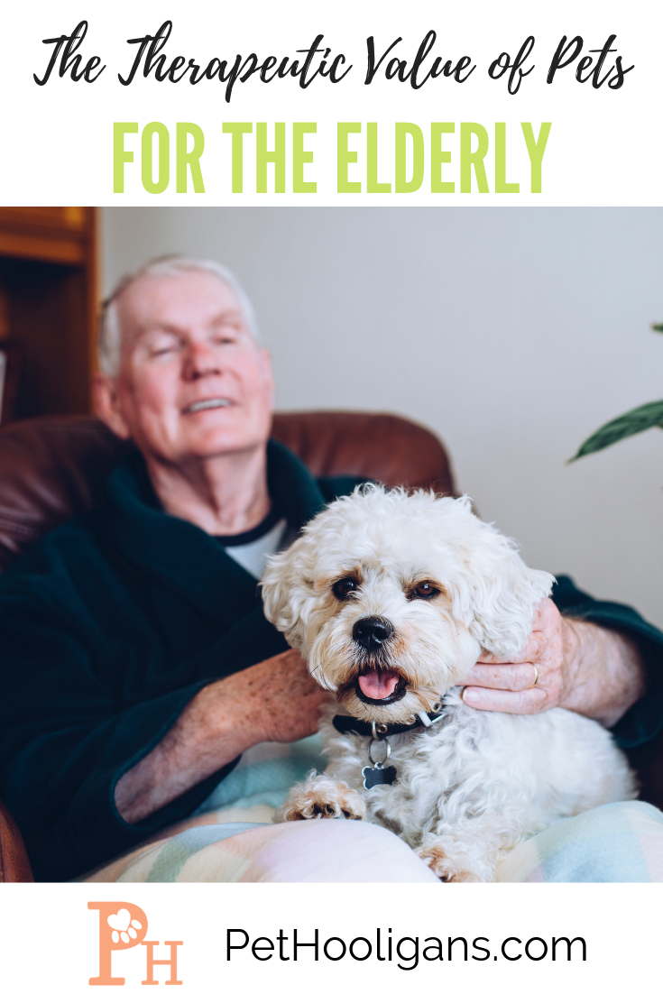The Therapeutic Value Of Pets For The Elderly Pets Dog Care