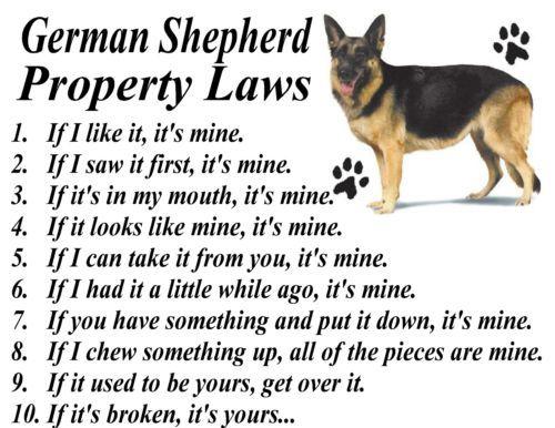 Parchment Print German Shepherd K 9 Dog Breed Property Laws