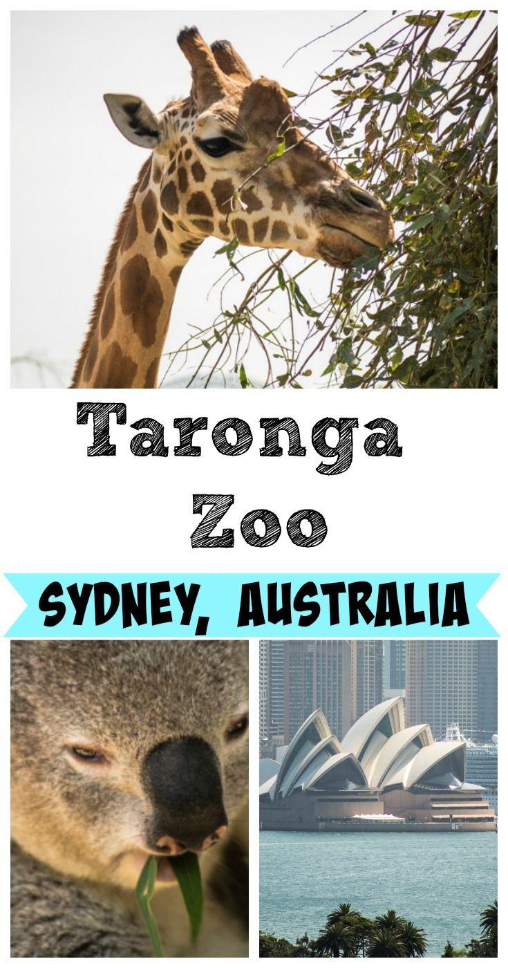 Taronga Zoo Sydney Australia Australia Tourism Australia Travel Australia