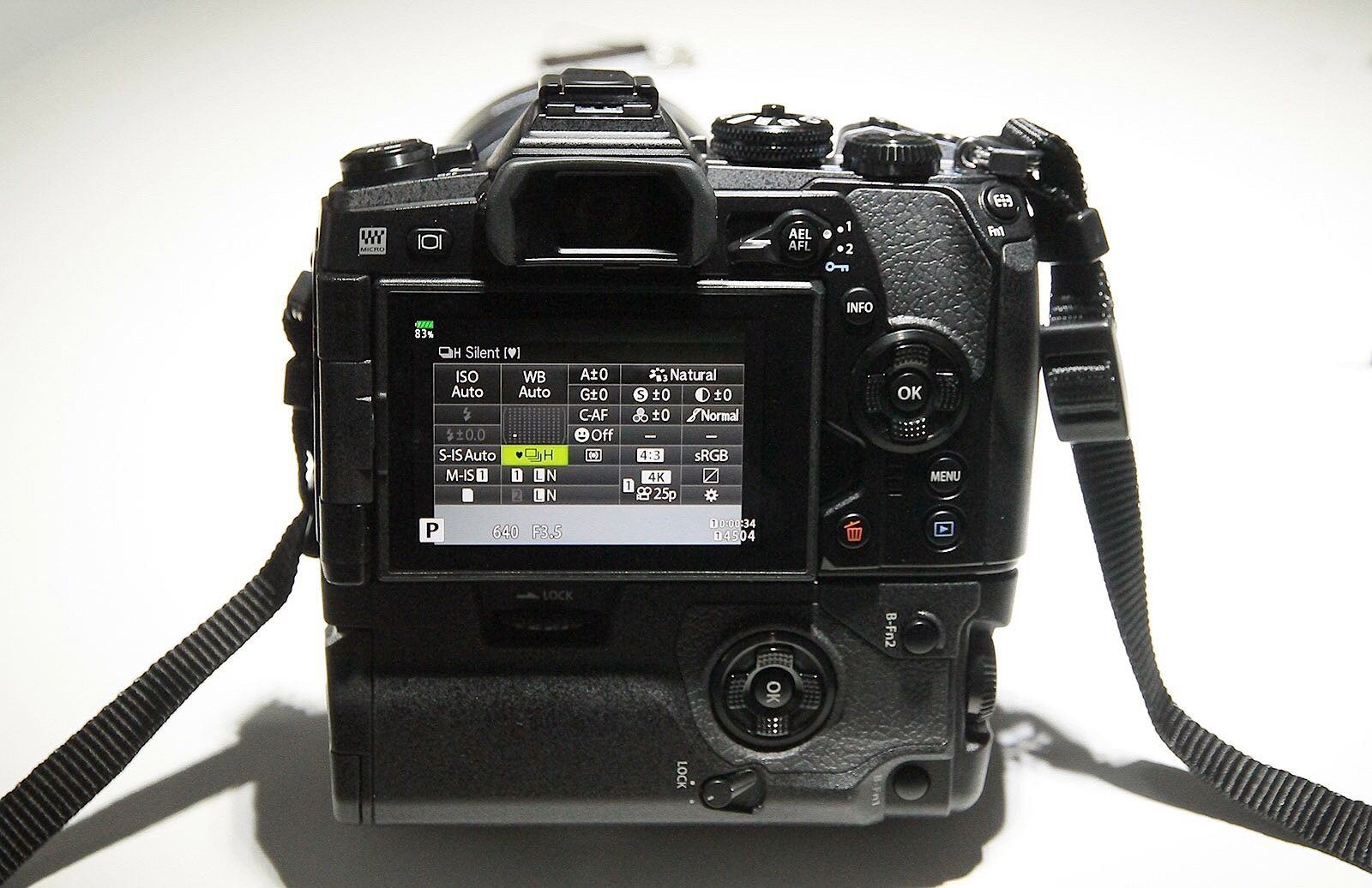 First Look At The Olympus Omd Em1 Mark Ii Mirrorless Camera Camera