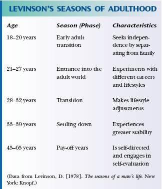 levinson developmental tasks essay Understanding adult development is an important step in the process of  understanding how societies function  levinson's stages of adult development  theory.