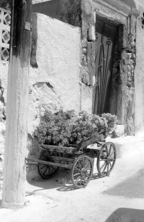 grelicks:  Couleur locale. Emporio, Santorini, Greece, 2010.