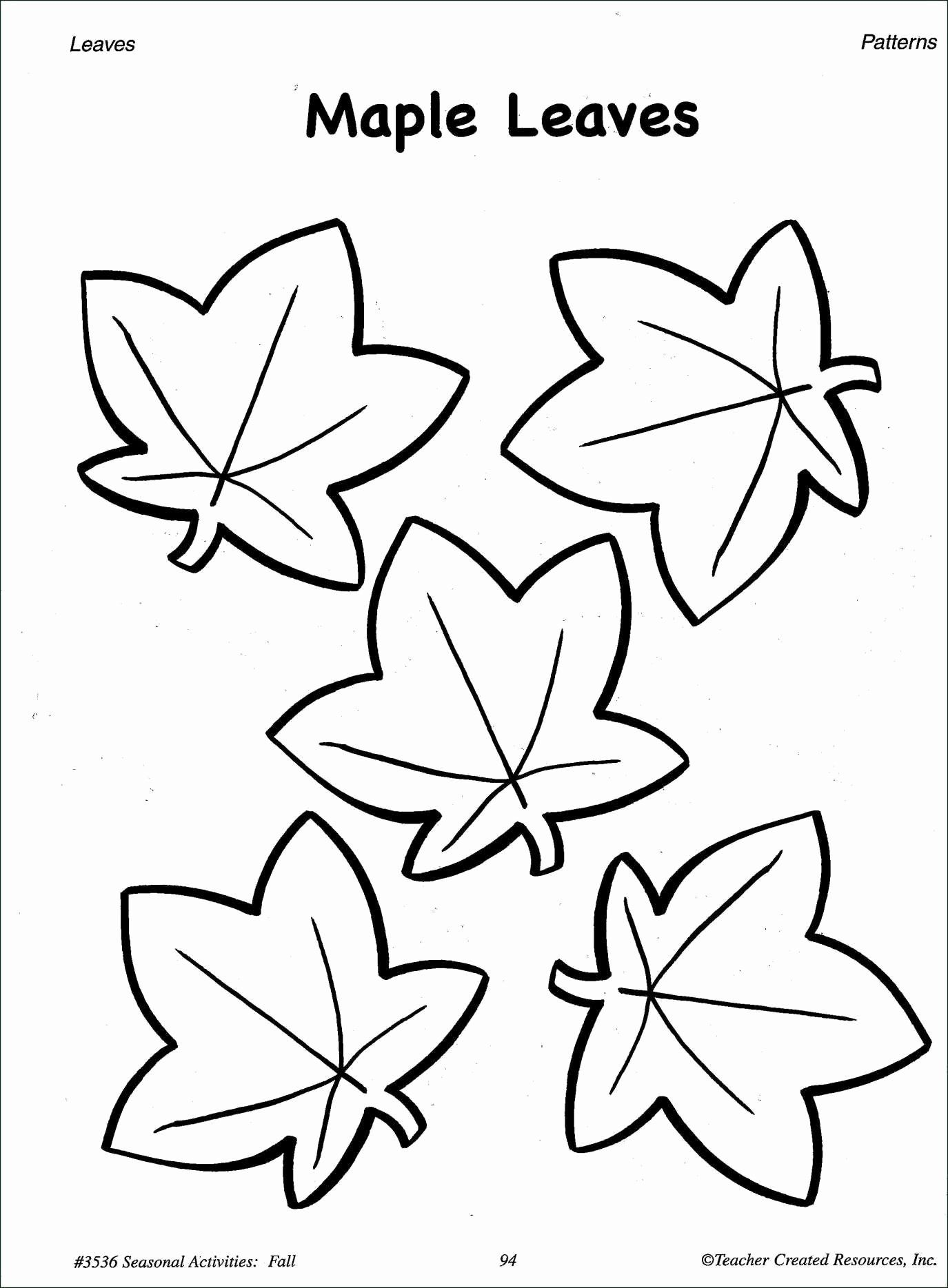 Small Flowers Coloring Pages Inspirational Best Maple Tree Leaf