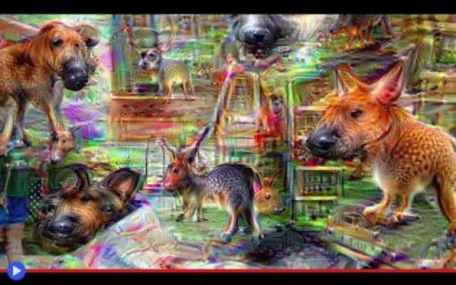 Un viaggio nel supermercato dove tutto è cane Quanto sto per raccontare è assolutamente accaduto, anche se non si conoscono il luogo ed il momento esatto della vcenda, il nome delle persone o tecnologie coinvolte, il tipo di strumenti utilizzati #tecnologia #computergraphic #scienza